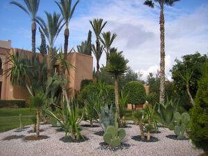les_jardins_de_l_hotel__8_