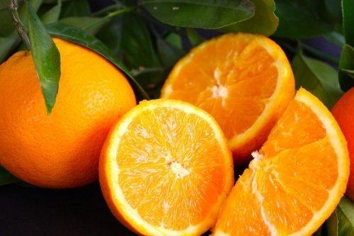 jus d'orange, citron et pamplemousse pour perdre du poids