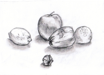 Nature morte 2 Crayon HB -2007-