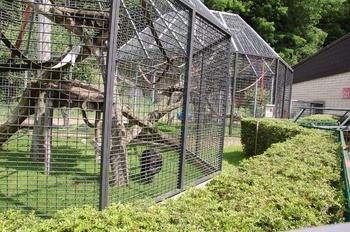 Zoo Saarbrücken 2012 143