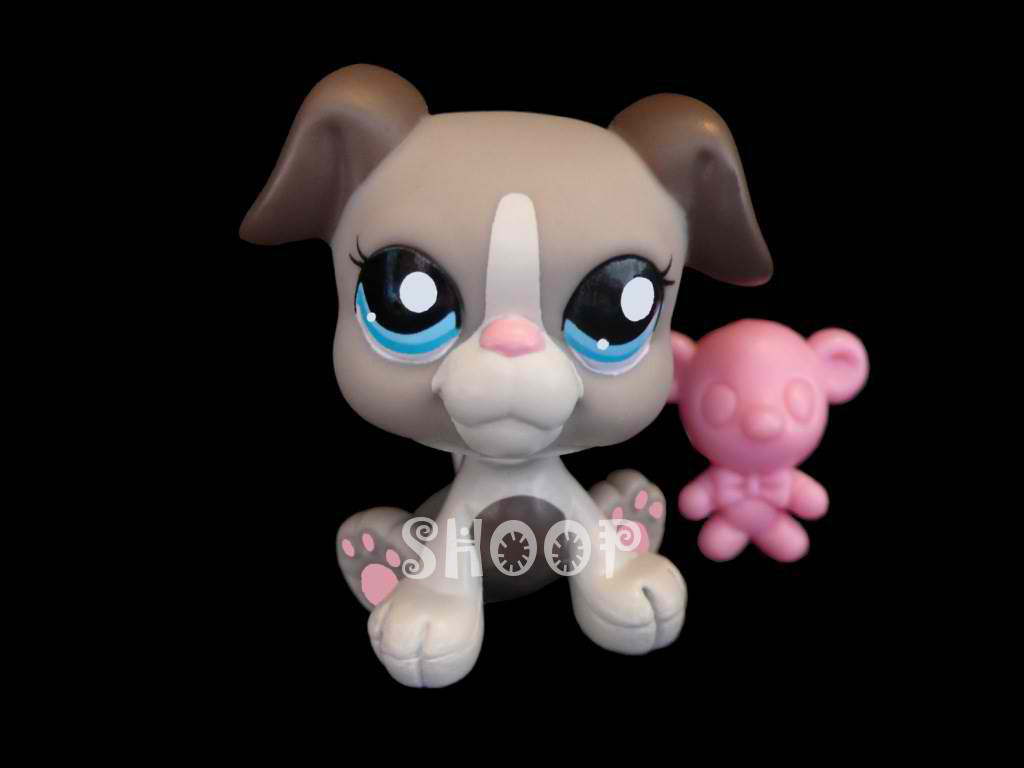 LPS 2038