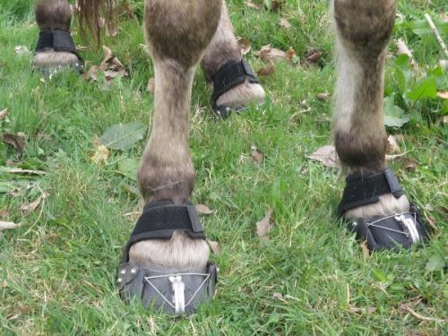 Les chaussures... des jujus