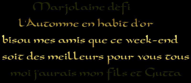 Pour Marjolaine défi ( L'automne en habit d'or)