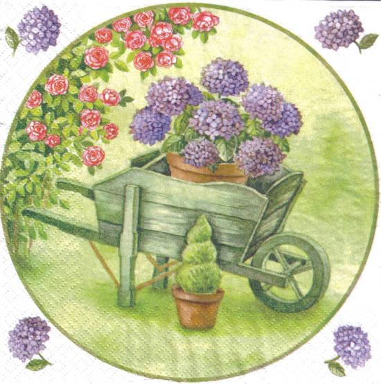 Comment dessiner des hortensias - Comment faire secher des hortensias ...