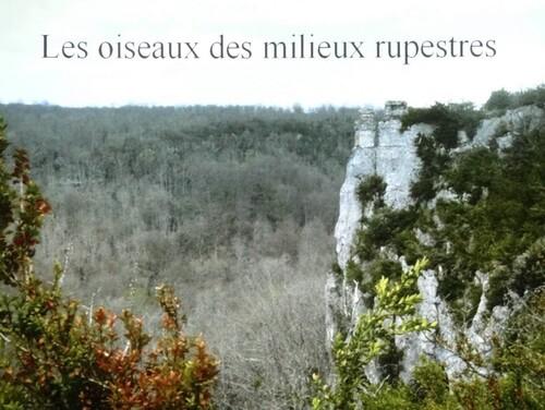"""""""Portraits d' oiseaux de Côte d'Or"""",  une conférence de la LPO à Laignes"""
