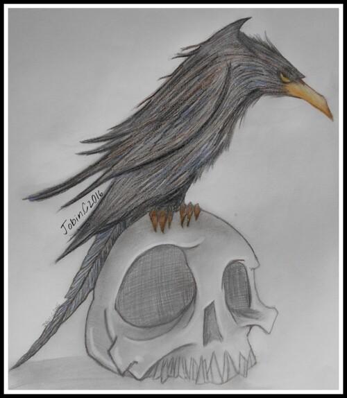 Corbeau sur Tête de Mort