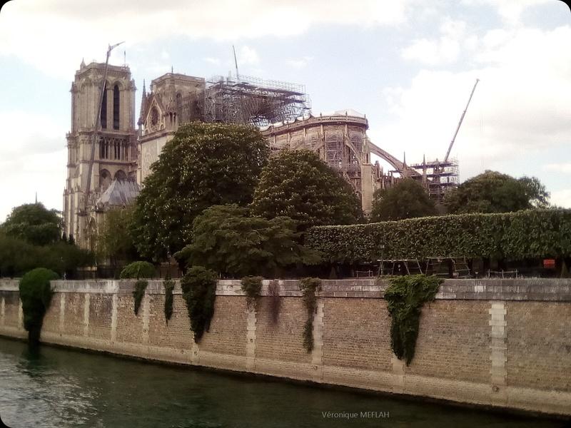 Notre-Dame de Paris : Quelques clichés ...