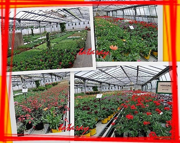 Jardinerie doc36R