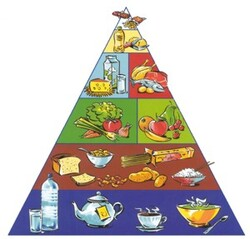Coin découverte : La pyramide alimentaire.