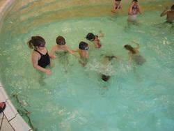 Jardin aquatique CPCE1