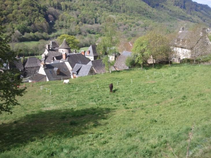 La magnifique vallée du mars, st vincent sous la verdure - Saint-Vincent-de-Salers