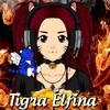 TigraElfina