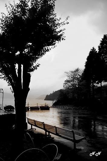 P1020118-solitude.jpg