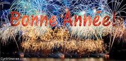 ^^^^^^^^ BONNE ANNEE!!!! ^^^^^^^^