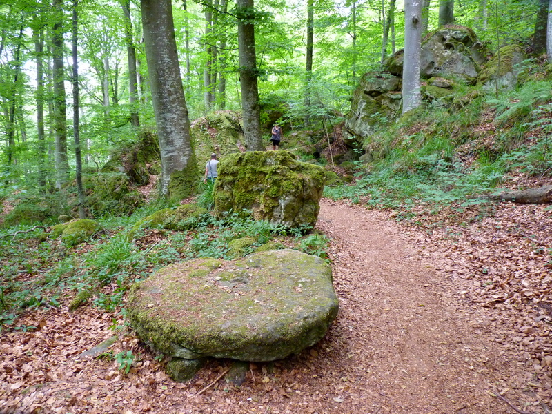 Mullerthal, petite Suisse Luxembourgeoise