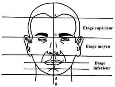 La technique du dessin - le visage humain