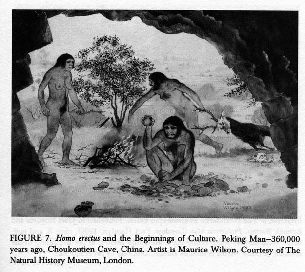 Homo erectus en actions