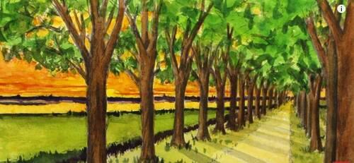 Dessin et peinture - vidéo 2355 : Comment dessiner, en perspective, une route bordée d'arbres, avec un point de fuite ?