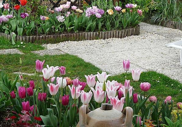 Tulipes--ensemble-13-04-12-005.jpg