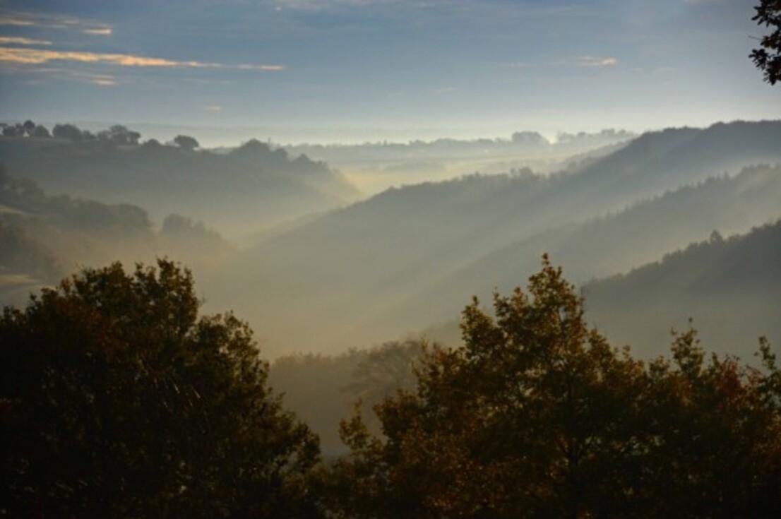 Brume-brouillard-3-2492_modifie-2.jpg