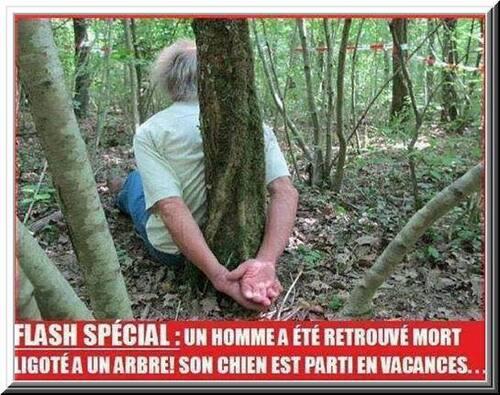 Flash spécial : Un homme a été retrouvé mort ligoté à un arbre... comme un chien !!!