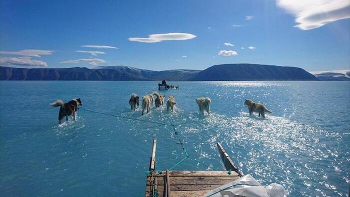 Le Groenland fond à vue d'œi