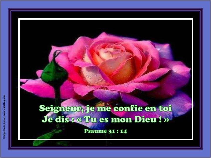 Tu es mon Dieu - Psaumes 31 : 14