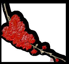 Kit St Valentin (2)