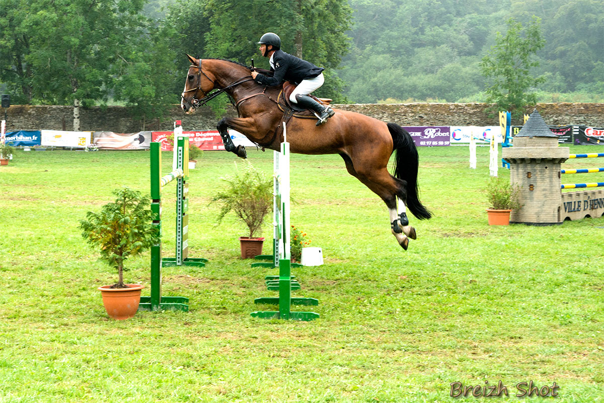 Equitation saut d 39 obstacles aux haras d 39 hennebont photos 2 breizh - Frison saut d obstacle ...
