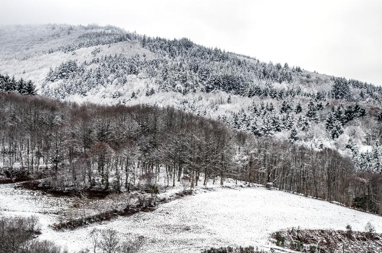 Balade hivernale #3, Arcon, janvier 2015