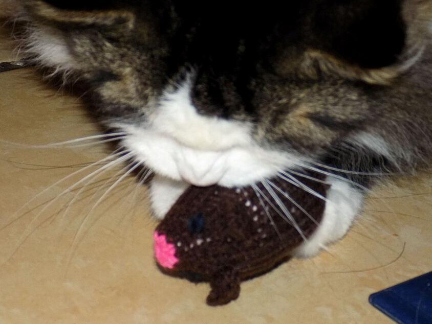 Une souris pour Poussette