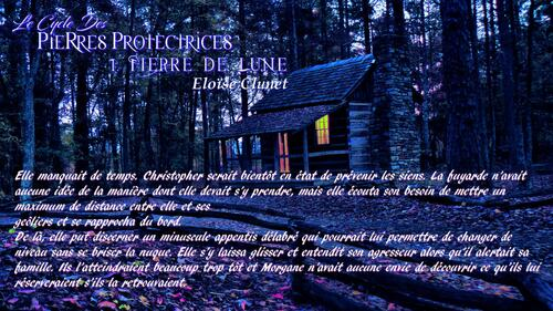 Le cycle des pierres protectrices tome 1 : Pierre de lune