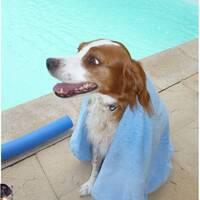 Emy à la piscine Ete 2015