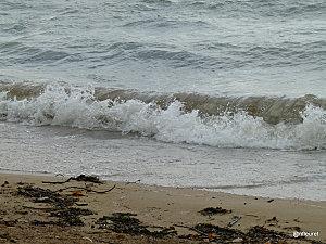 baby-plage-geneve2010-255--16-.jpg