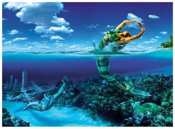 Fische-48x40-Web.jpg