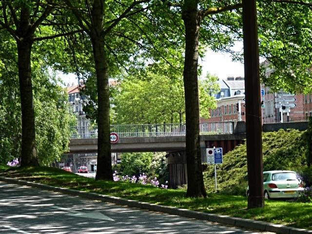 Metz ville verte - mp1357 26 01 2011 10
