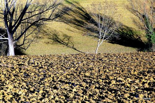 Randonnée sur le coteau de Vieille-Toulouse