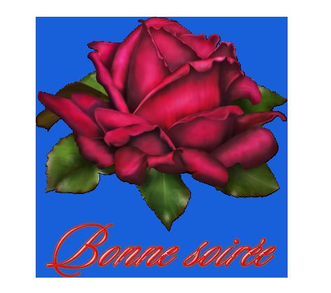 Dites le avec des roses...