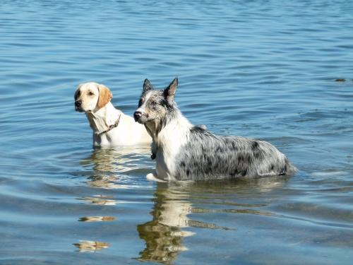 2 eme jour a la mer !