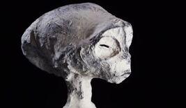 ALIEN PROJECT - Les Êtres de Nazca - page 7