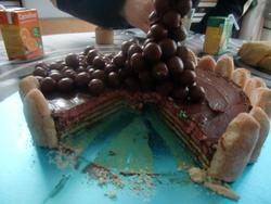 "Mon premier ""Gravity cake"""