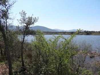 Lac des Escarcets, rive droite