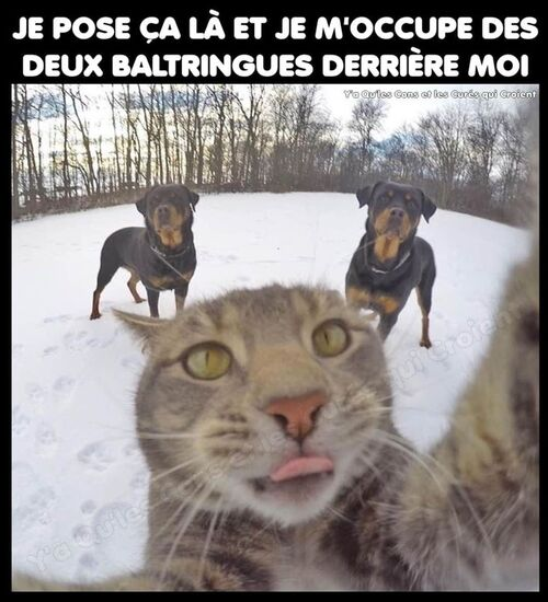 Rire !