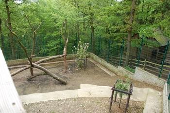 Parc animalier Bouillon 2013 enclos 213
