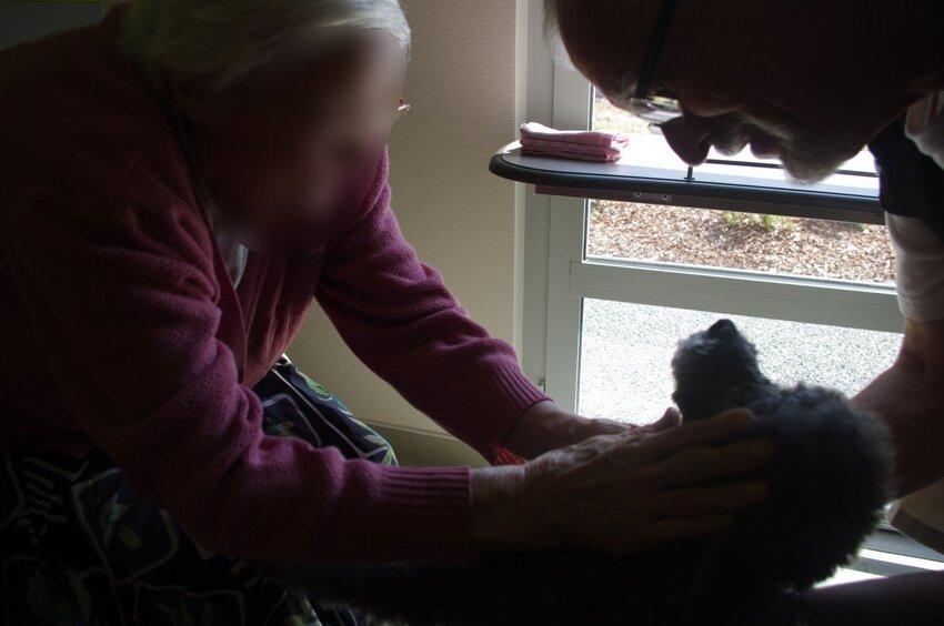 Suite de la visite à la maison de retraite de Marennes(17)