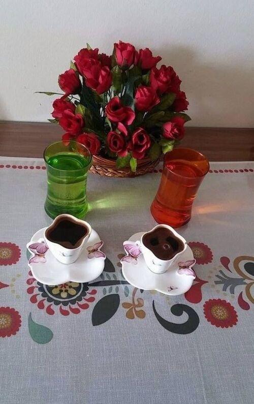 Premières tasses...