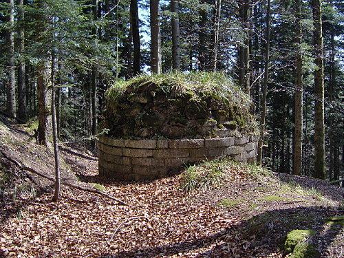 roche pierre piquee neuvevoie derzognier 062