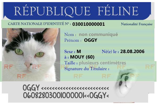 La Galerie de Féli - Page 3 IydSqagEib7LXtF6ioPGhTCz_Vc