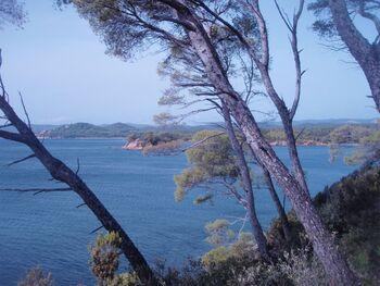 L'îlot de Léoube