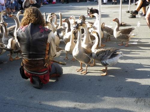 Montbéliard - La fête médiévale